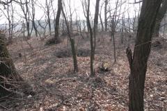 2012-03-18 Stara Rawa - grodzisko (13)