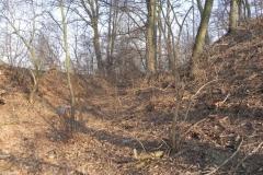 2012-03-18 Stara Rawa - grodzisko (20)