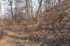 2012-03-18 Stara Rawa - grodzisko (21)
