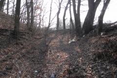 2012-03-18 Stara Rawa - grodzisko (24)