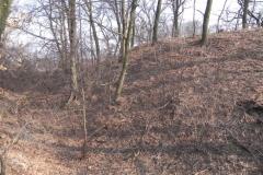 2012-03-18 Stara Rawa - grodzisko (26)