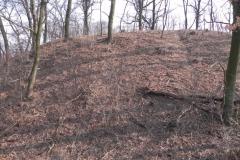 2012-03-18 Stara Rawa - grodzisko (27)