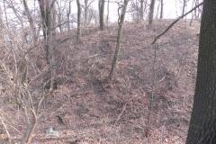 2012-03-18 Stara Rawa - grodzisko (4)
