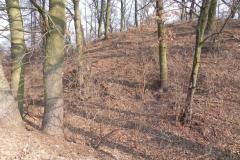 2012-03-18 Stara Rawa - grodzisko (7)