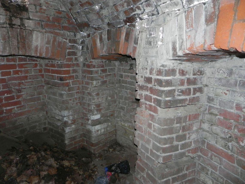 2010-01-04 Ujazd - pałac i młyn (40)