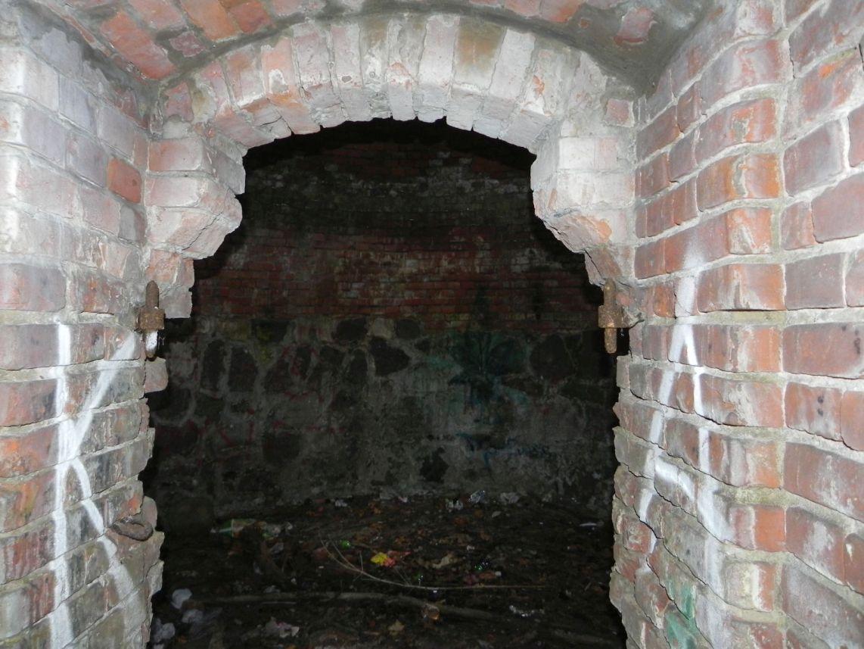 2010-01-04 Ujazd - pałac i młyn (46)