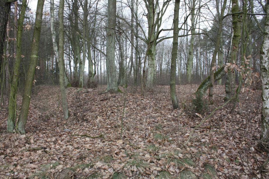 2019-02-15 Stolniki - cm. z I wojny światowej (2)