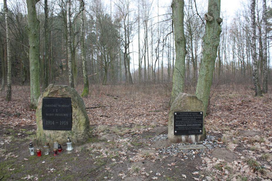 2019-02-15 Stolniki - cm. z I wojny światowej (20)