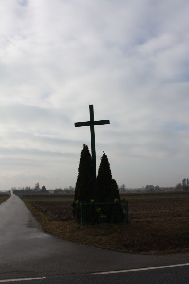2019-02-15 Jankowice krzyż nr1 (2)