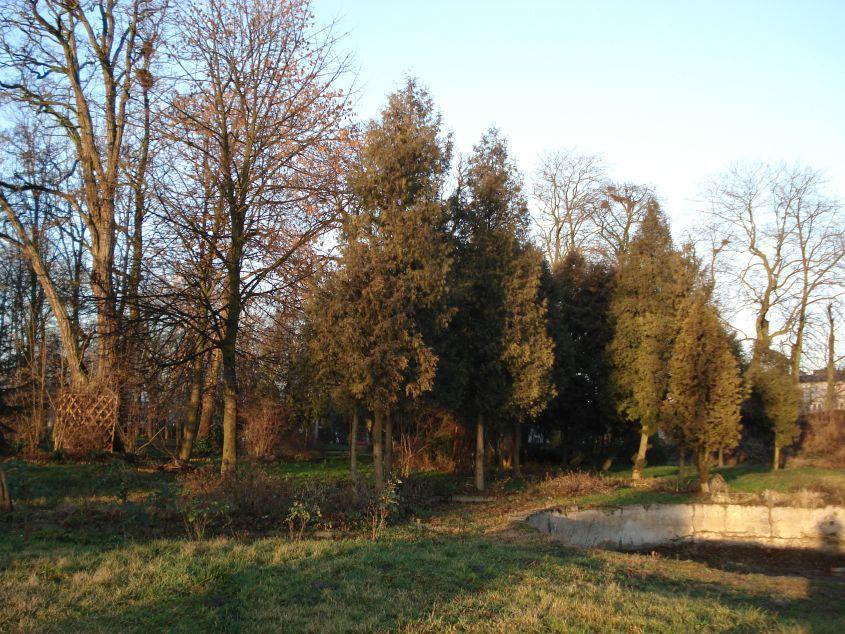 2007-01-21 Biała Rawska - zamek (4)