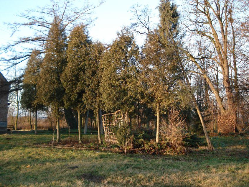2007-01-21 Biała Rawska - zamek (5)