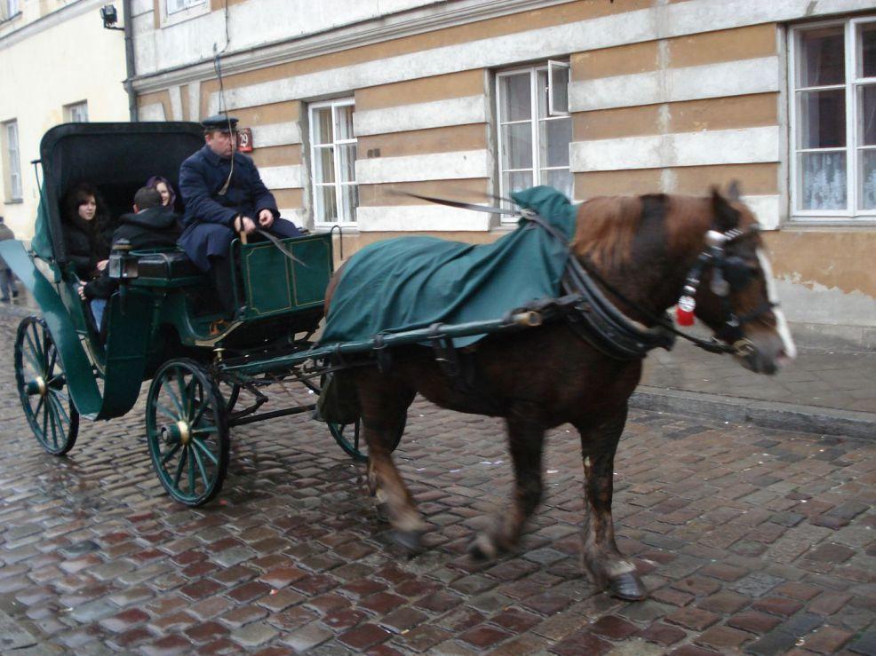 2007-01-06 Warszawa - Zamek Królewski (21)