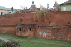 2007-01-06 Warszawa - Zamek Królewski (4)