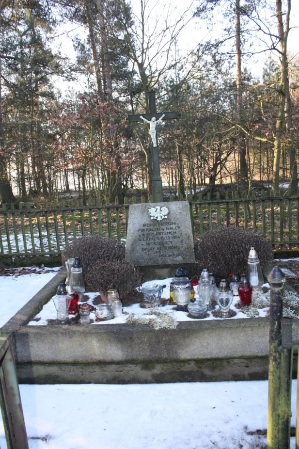 2019-02-10 Złota - pomnik (15)