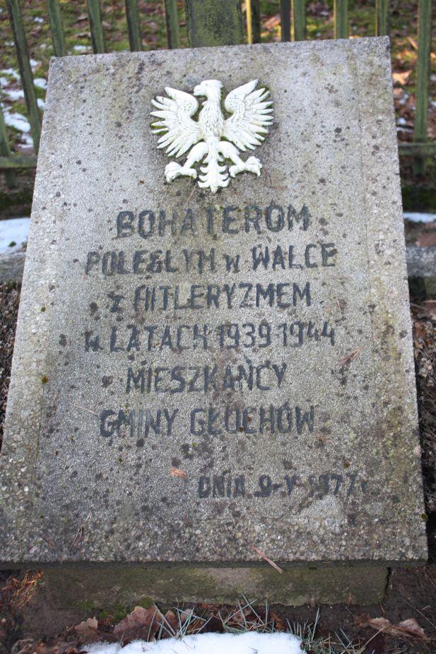 2019-02-10 Złota - pomnik (9)
