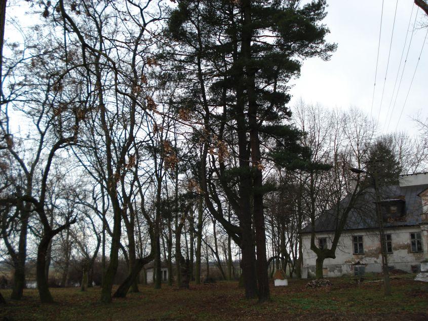 2007-01-14 Wilkowice - pałac (12)