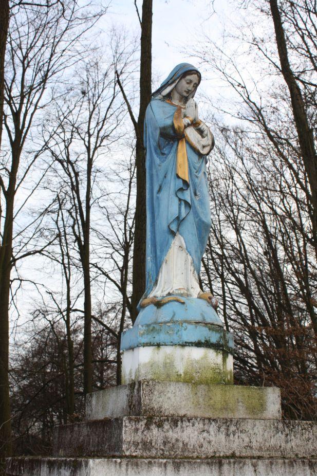 2019-02-23 Kaleń kapliczka nr2 (14)