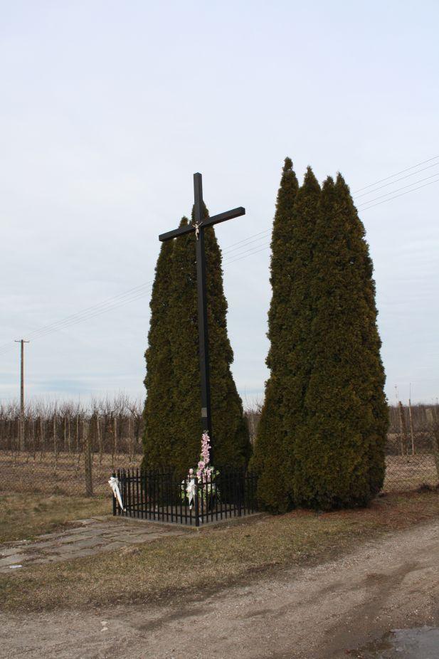 2019-02-23 Kaleń krzyż nr1 (1)