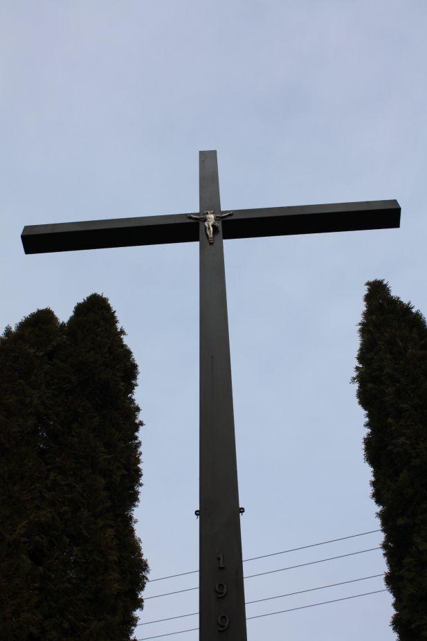2019-02-23 Kaleń krzyż nr1 (10)