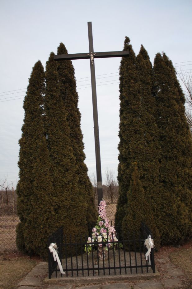 2019-02-23 Kaleń krzyż nr1 (14)