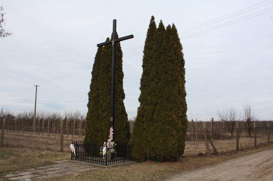 2019-02-23 Kaleń krzyż nr1 (2)