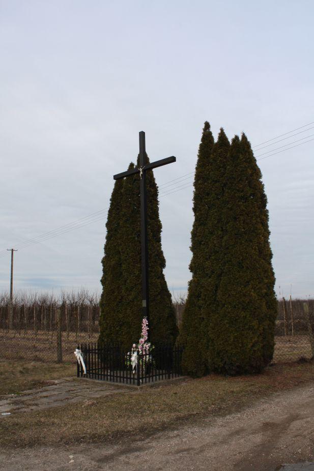 2019-02-23 Kaleń krzyż nr1 (3)