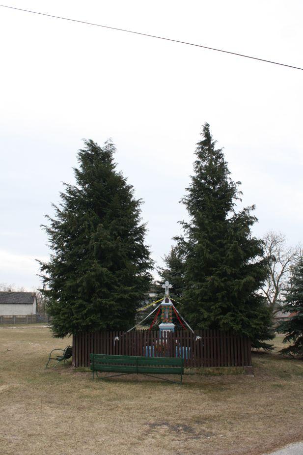 2019-02-24 Kawęczyn kapliczka nr1 (17)