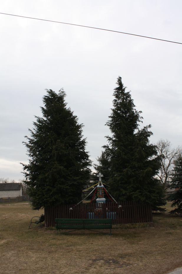 2019-02-24 Kawęczyn kapliczka nr1 (18)