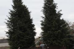 2019-02-24 Kawęczyn kapliczka nr1 (2)