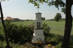 2018-05-04 Kolonia Głuchówek kapliczka nr1 (18)