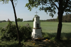 2018-05-04 Kolonia Głuchówek kapliczka nr1 (4)