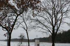 2018-12-20 Kolonia Głuchówek kapliczka nr1 (13)