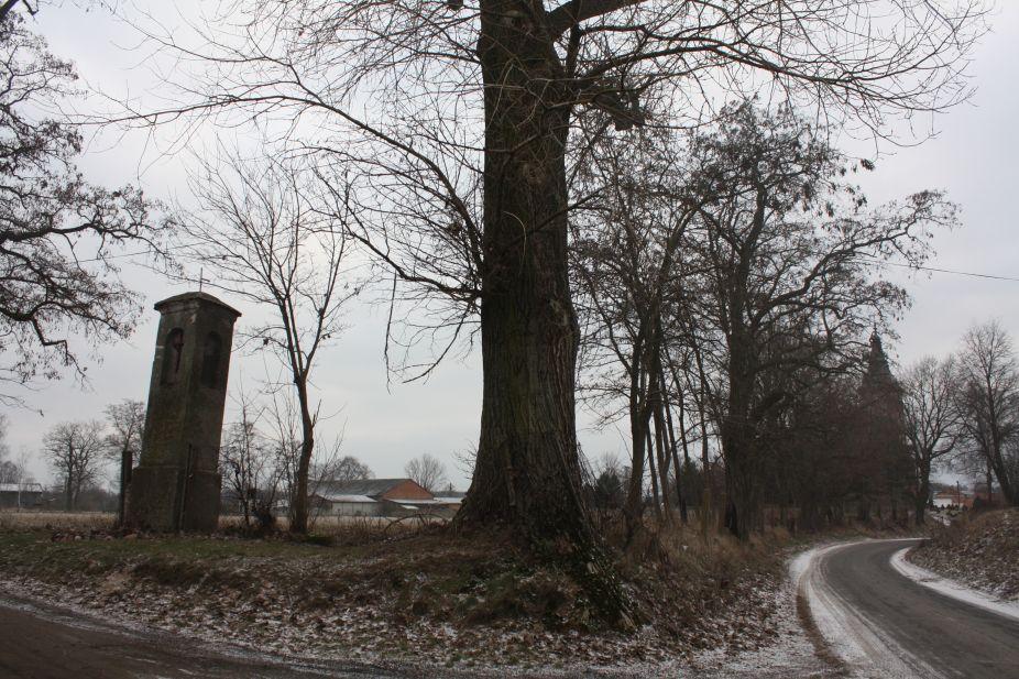 2019-01-19 Krzemienica kapliczka nr2 (12)