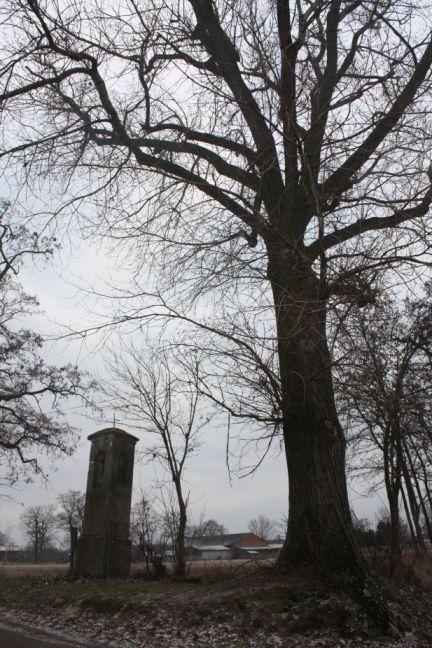 2019-01-19 Krzemienica kapliczka nr2 (13)