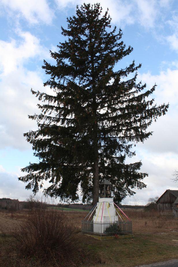 2019-01-03 Księża Wola kapliczka nr1 (3)