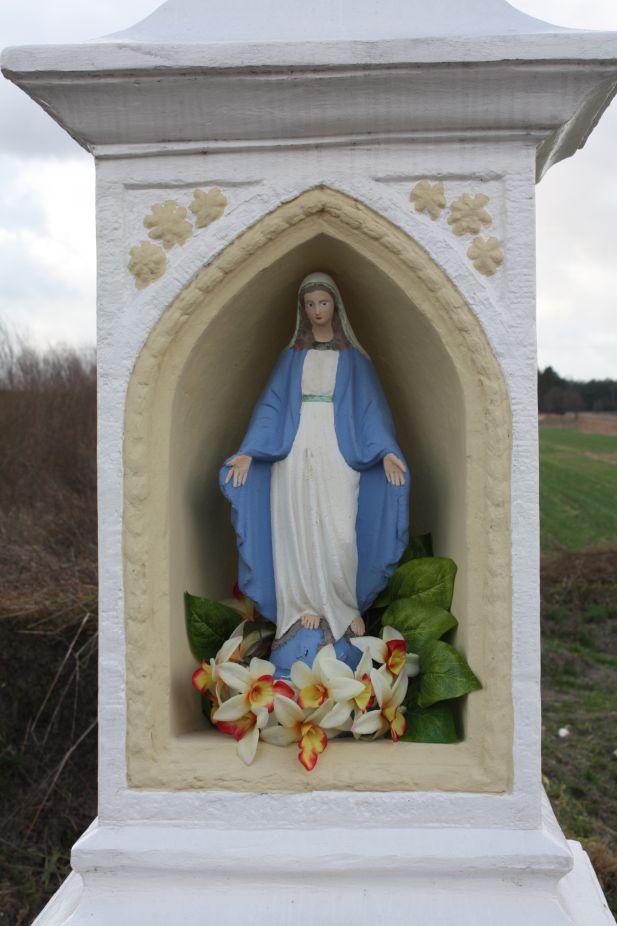 2019-01-03Księża Wola kapliczka nr3 (17)