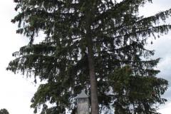 2018-07-01 Księża Wola kapliczka nr1 (10)