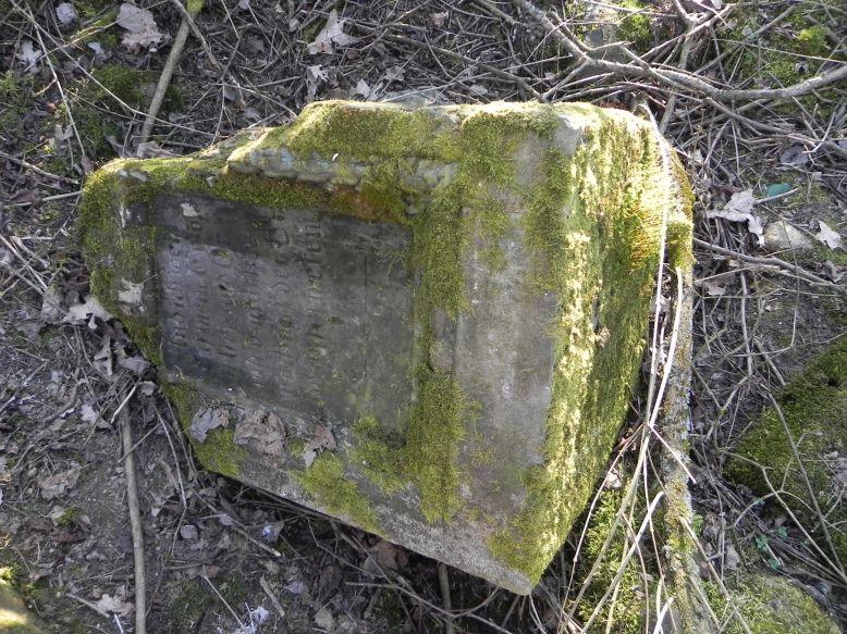 2018-04-08 Brzozów - cm. z I wojny światowej(24)