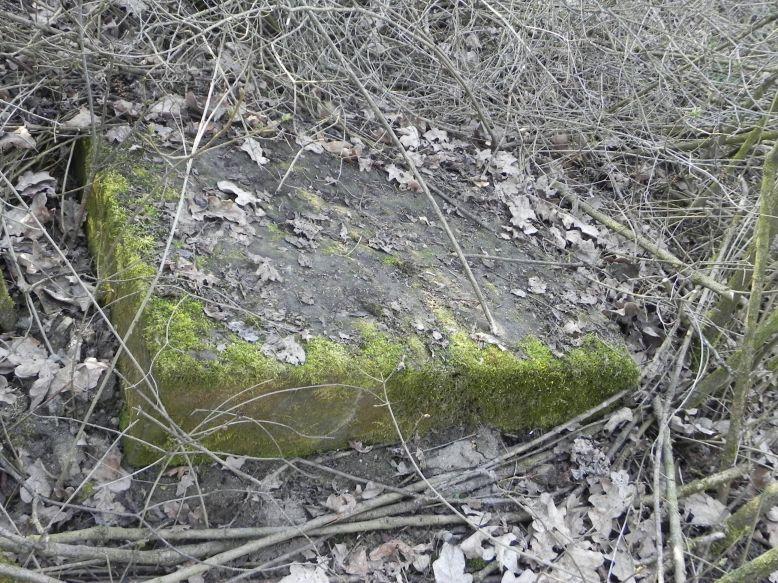 2018-04-08 Brzozów - cm. z I wojny światowej(27)