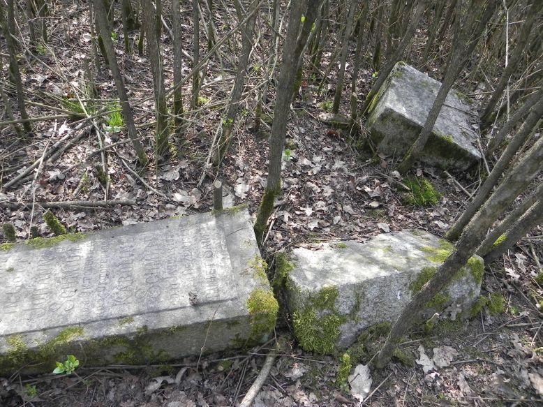 2018-04-08 Brzozów - cm. z I wojny światowej(52)