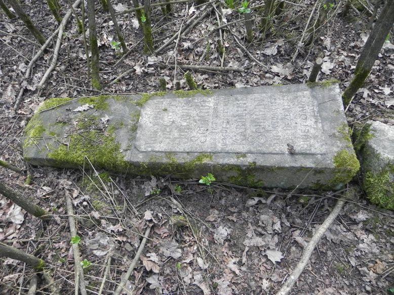 2018-04-08 Brzozów - cm. z I wojny światowej(53)
