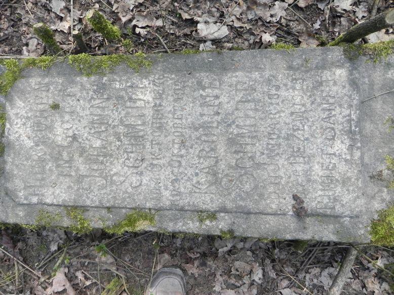 2018-04-08 Brzozów - cm. z I wojny światowej(55)