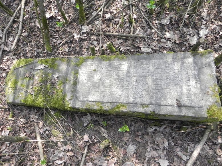 2018-04-08 Brzozów - cm. z I wojny światowej(56)