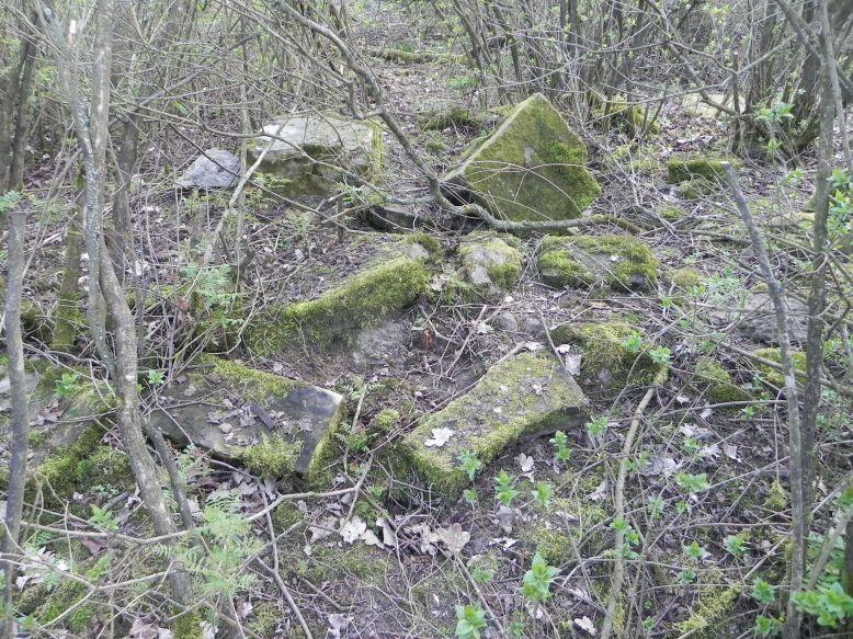 2018-04-08 Brzozów - cm. z I wojny światowej(76)