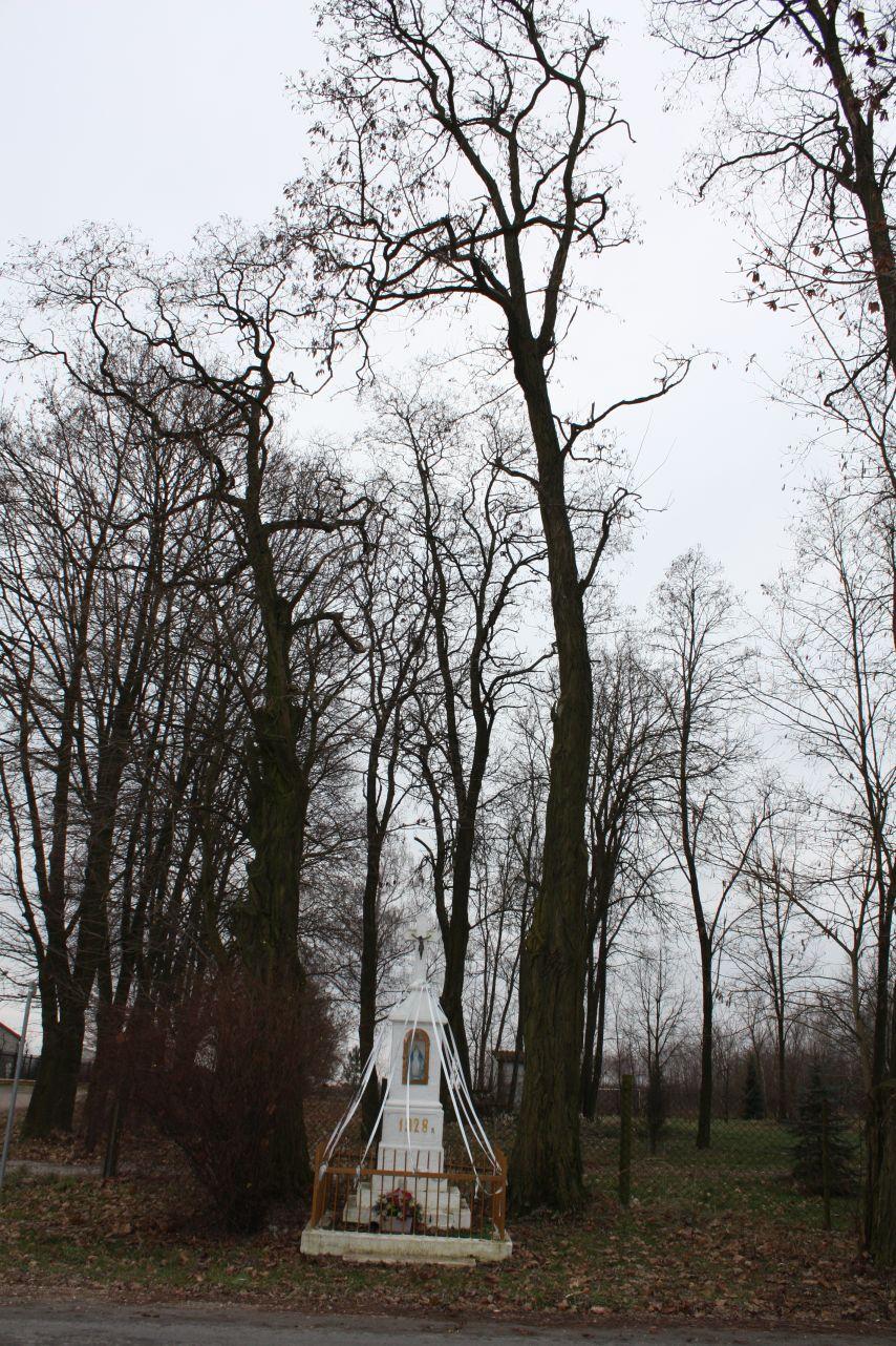 2018-12-23 Kuczyzna kapliczka nr1 (13)