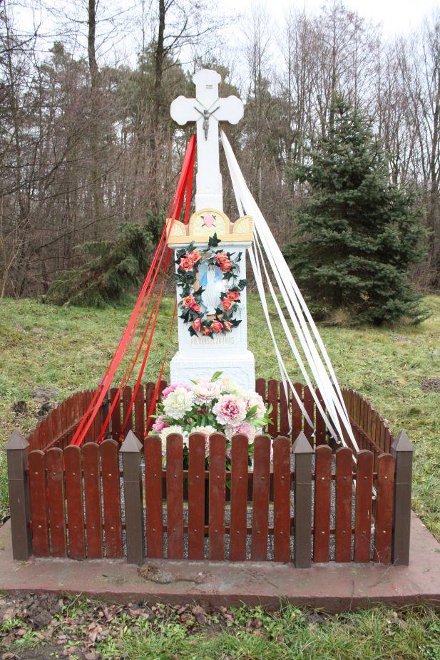 2018-12-31 Łęg kapliczka nr1 (14)
