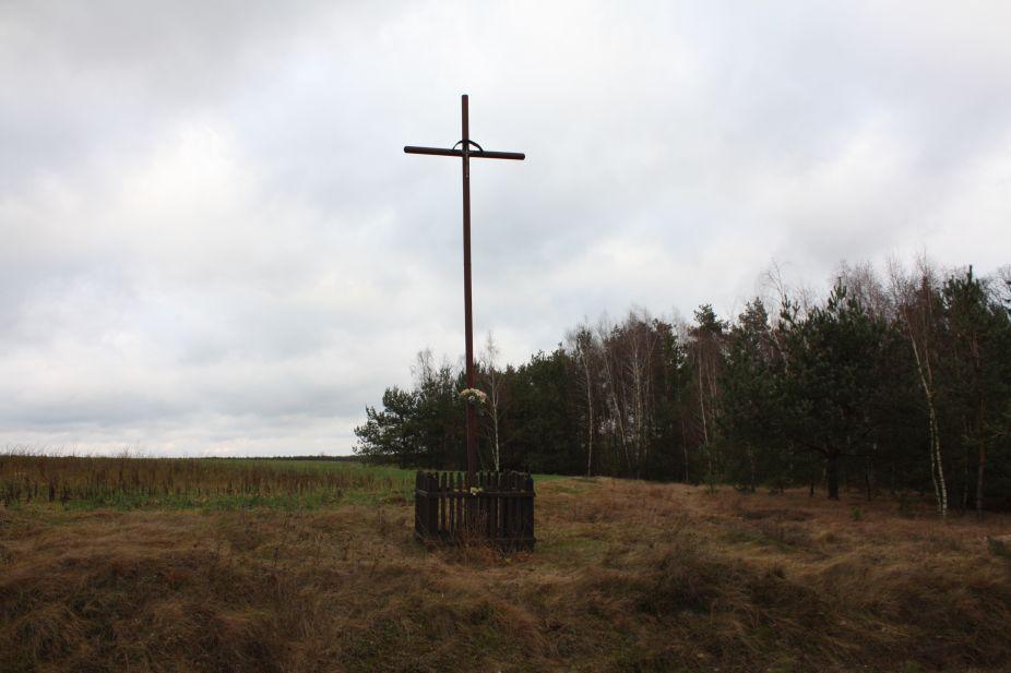 2018-12-31 Łęg krzyż nr1 (2)