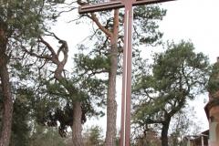 2019-12-29 Łęgonice Nowe krzyż nr1 (1)