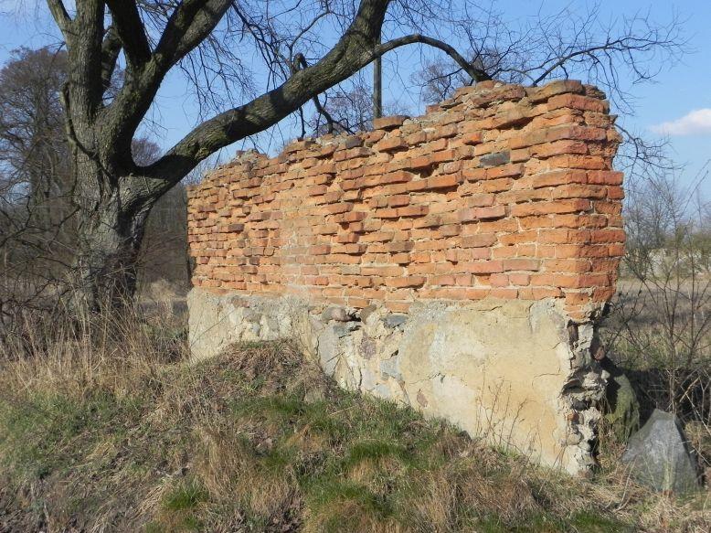 2018-04-08 Brzozówka - mur i piwnice (11)