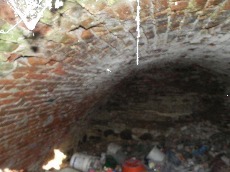 2018-04-08 Brzozówka - mur i piwnice (14)